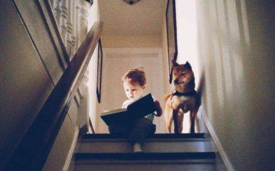 Правила чтения для детей и взрослых