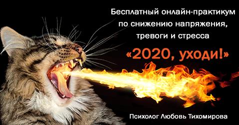Бесплатный онлайн-практикум «2020, уходи!»