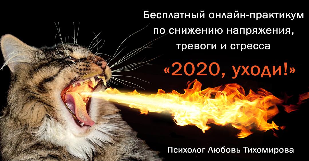 Любовь Тихомирова Бесплатный онлайн-практикум по настройке желаемого сценария на новый год «2020, уходи!»